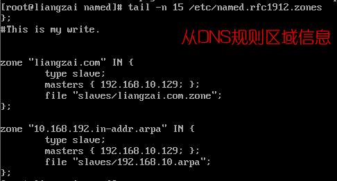 从DNS规则区域信息.png