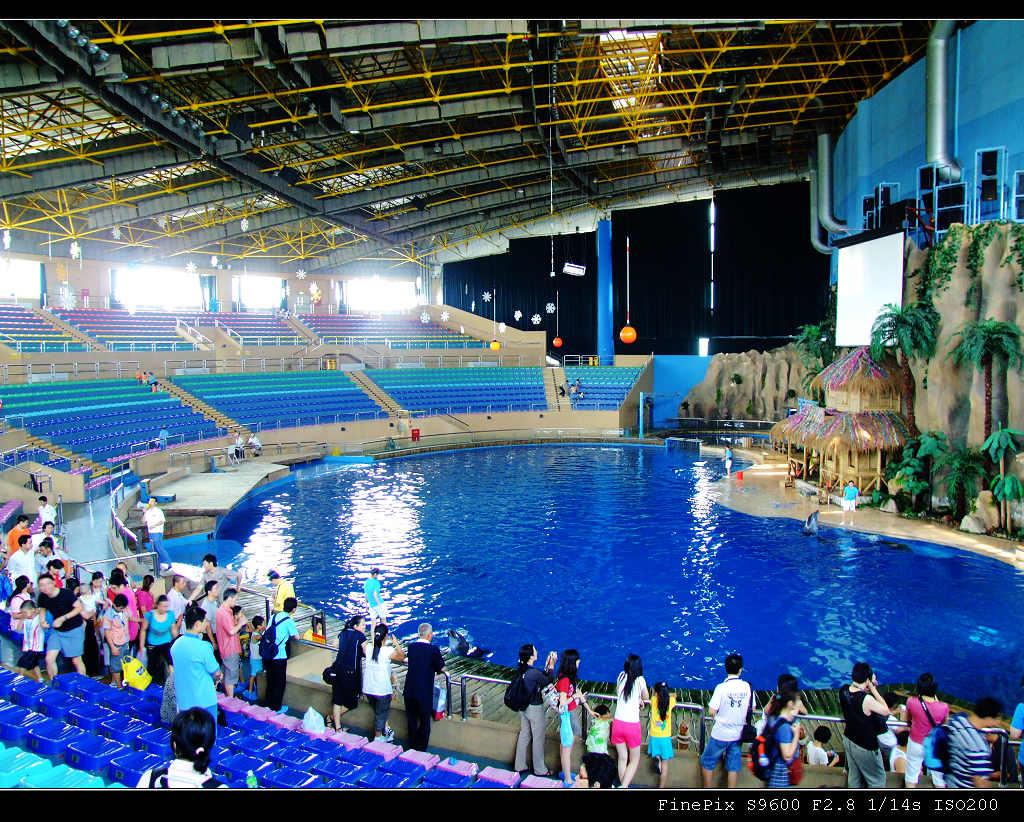 海洋馆 动物园