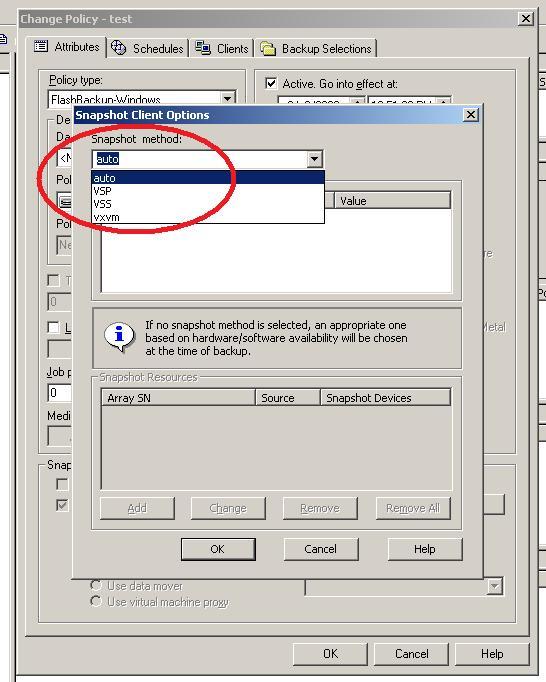 falshbackup-snapshotClientOption-auto.jpg