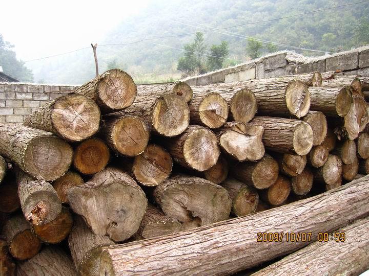 很多木头,看起来很沧桑。